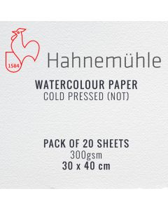 Hahnemuhle Watercolour Paper 300gsm 30 x 40cm 20 Sheets