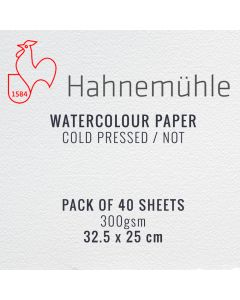 Hahnemuhle Watercolour Paper 300gsm 25 x 32.5cm 40 Sheets