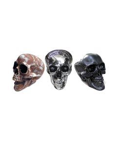 Prop Plastic Human Skull Models in 3 Colours